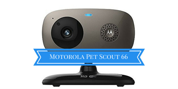 Motorola Pet Scout66