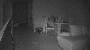 Remocam night view