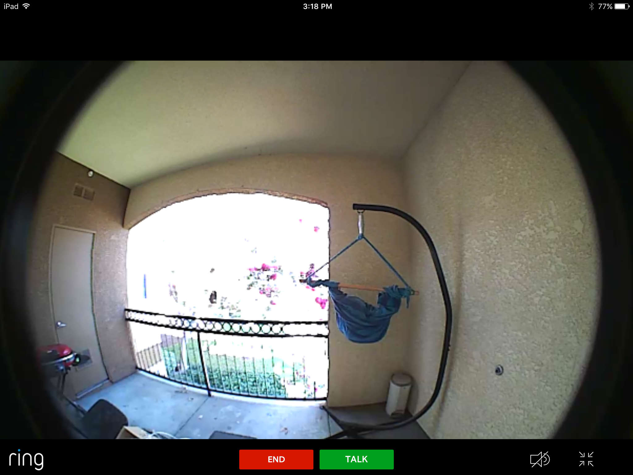 Ring Pro Doorbell Live View Not Working